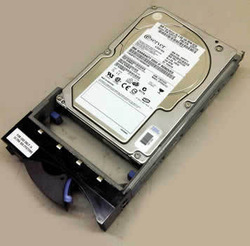 IBM 600GB 10000RPM SAS 6GBPS SFF 2.5INCH HARD DRIVE WITH TRAY