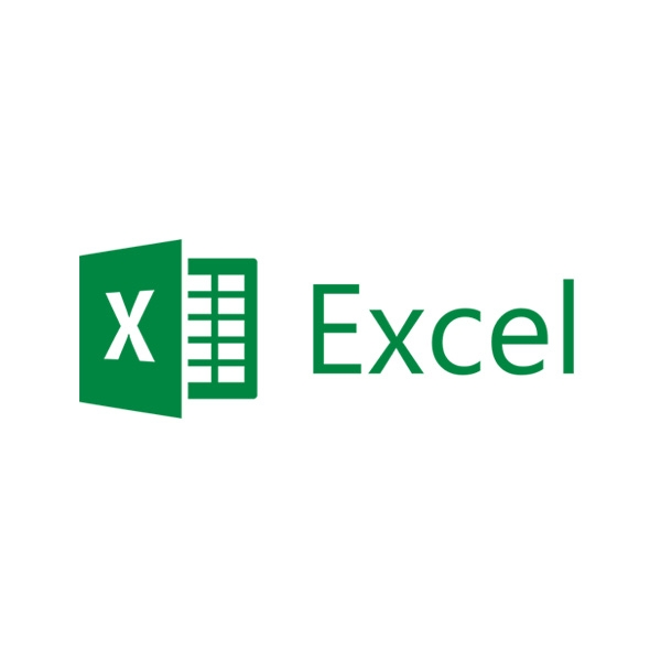 Microsoft Excel 2019 Open Business Sngl OLP NL